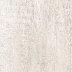 Greenwood Bianco | Ceramic tiles | Rondine