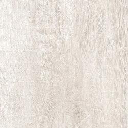 Greenwood Bianco | Carrelage céramique | Rondine