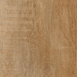 Greenwood Noce | Carrelage céramique | Rondine