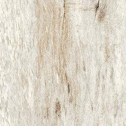 Inwood Ivory | Carrelage céramique | Rondine