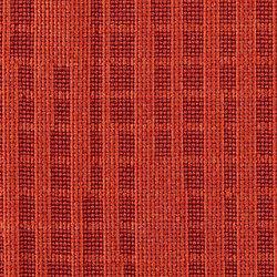 Equilux | Sunspot | Tejidos tapicerías | Luum Fabrics