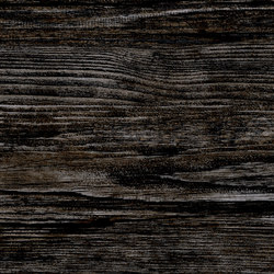 Jungle Black | Ceramic tiles | Rondine