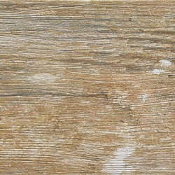 Metalwood Musk | Carrelage céramique | Rondine