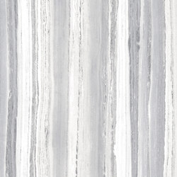 Palissandro Light Grey | Ceramic tiles | Rondine