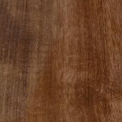 Tabula Cappuccino | Keramik Fliesen | Rondine