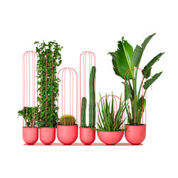Cacti planter | Pflanzgefäße | nola