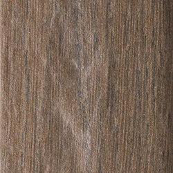 Vintage Brune | Baldosas de cerámica | Rondine