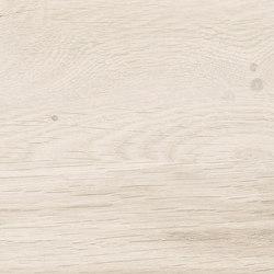Visual Panna | Carrelage céramique | Rondine