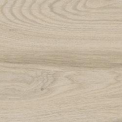 Visual Sabbia | Carrelage céramique | Rondine