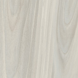 Woodie White | Ceramic tiles | Rondine