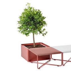 Arena | Flowerpots / Planters | nola