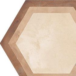 Terra | Cornice Vers.C | Carrelage céramique | Marca Corona