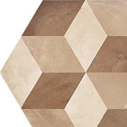 Terra | Cubo Esa Vers.C | Piastrelle ceramica | Marca Corona
