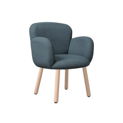 Dento | Chairs | Cappellini