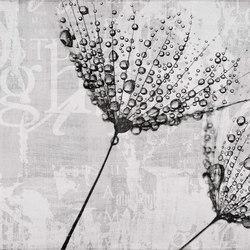 canvas | drop | Arte | N.O.W. Edizioni