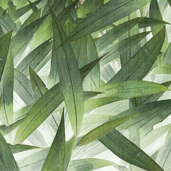 jungle | foliage | Wall art / Murals | N.O.W. Edizioni