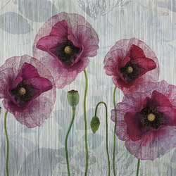textile | papaver | Wall art / Murals | N.O.W. Edizioni