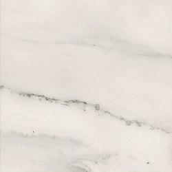 Motif | Calacatta Silver 20 | Ceramic tiles | Marca Corona