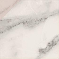 Motif | Calacatta Silver D.Rose 20 | Ceramic tiles | Marca Corona