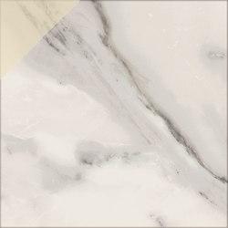 Motif | Calacatta Silver D.Gold 20 | Ceramic tiles | Marca Corona