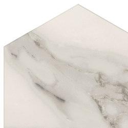 Motif | Calacatta Silver D.Rose Esa | Ceramic tiles | Marca Corona