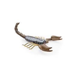 Fauna Scorpion | Objects | Mambo Unlimited Ideas