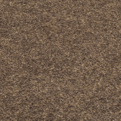 Office [Flat] golden brown | Tapis / Tapis de designers | kymo