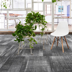 Discord™ | Wall-to-wall carpets | Bentley Mills