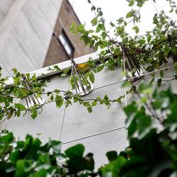 Façade greening | Green facades | Jakob