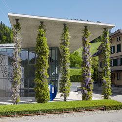 Column greening | Facciate verdi | Jakob