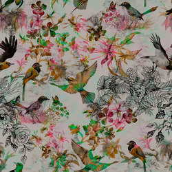 Walls By Patel | Carta da Parati Funky Birds 1 | Carta parati / tappezzeria | Architects Paper