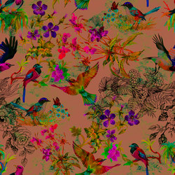 Walls By Patel | Wallpaper Funky Birds 3 | Carta parati / tappezzeria | Architects Paper