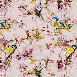 Walls By Patel | Wallpaper Songbirds 2 | Wall coverings / wallpapers | Architects Paper