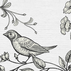 Birdy 3 | Wall coverings / wallpapers | Architects Paper