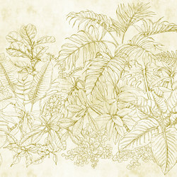 Fern Garden 1 | Wall coverings / wallpapers | Architects Paper