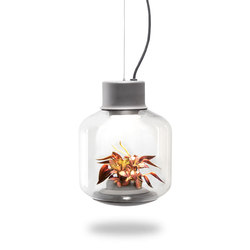 Mygdal Plantlight Regular Lush | Suspended lights | Nui Studio