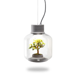 Mygdal Plantlight Regular Zen | Suspended lights | Nui Studio