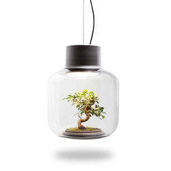 Mygdal Plantlight Large Zen | Suspended lights | Nui Studio