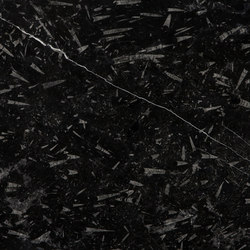 Devonian Black | Natural stone panels | LEVANTINA
