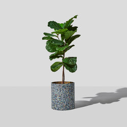 Confetti Planter | Maceteros | DesignByThem
