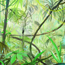 Big jungle   Wall coverings / wallpapers   WallPepper