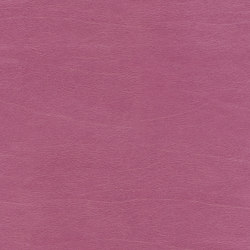 Club LW 360 50 | Upholstery fabrics | Elitis