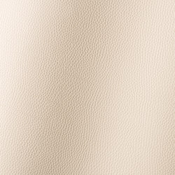 Bologna beige 018501 | Synthetic woven fabrics | AKV International