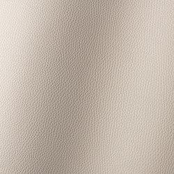 Bologna kaschmir 018502 | Synthetic woven fabrics | AKV International
