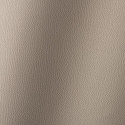 Bologna taupe 018503 | Synthetic woven fabrics | AKV International