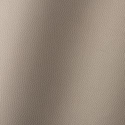 Bologna taupe 018503 | Tessuti sintetici | AKV International