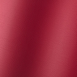 Bologna amarena 018509 | Synthetic woven fabrics | AKV International