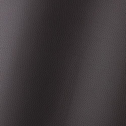 Bologna mocca 018513 | Kunststoff Gewebe | AKV International