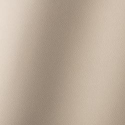 Torino cashmere 019784 | Tessuti sintetici | AKV International