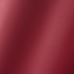 Torino port 019787 | Synthetic woven fabrics | AKV International